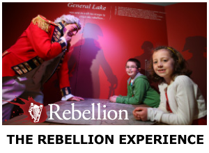 REBELLION EXPERIENCE
